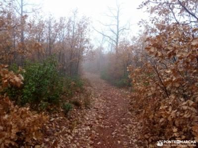Robledales Riaza-Ermita Hontanares; sierra de madrid parque nacional ordesa y monte perdido nuria gi